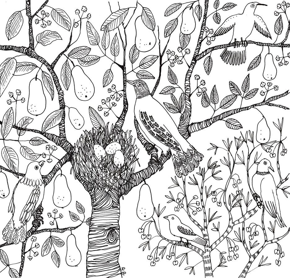 Zen Nest Coloring Page