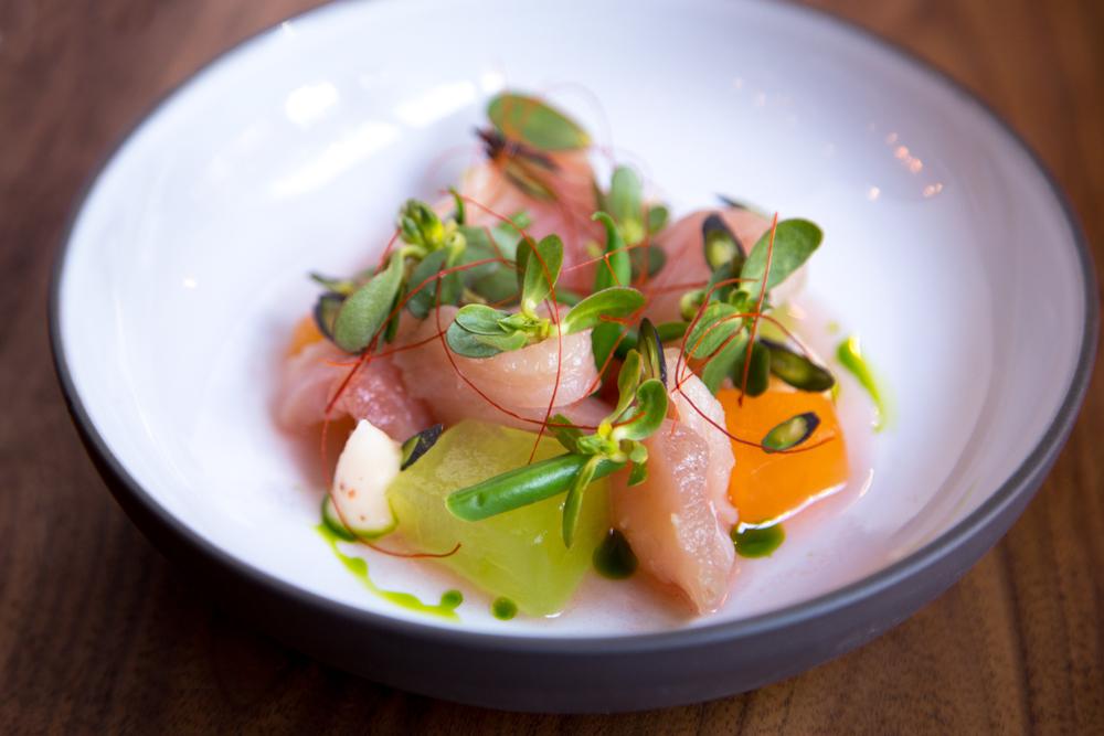 44737 food.albacore_tuna.jpg
