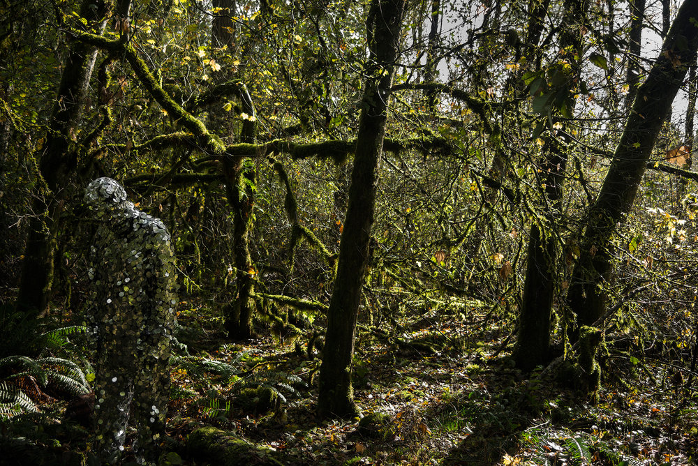 Pato Hebert,  The Oscillator in Tualatin Hills Nature Park  (2014), Archival pigment print, Edition of 5, 26.3 x 39.5 inches