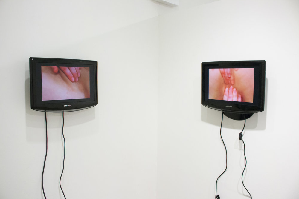 Bat-Ami Rivlin, http://BLANK install view, gif videos or digitally altered porn