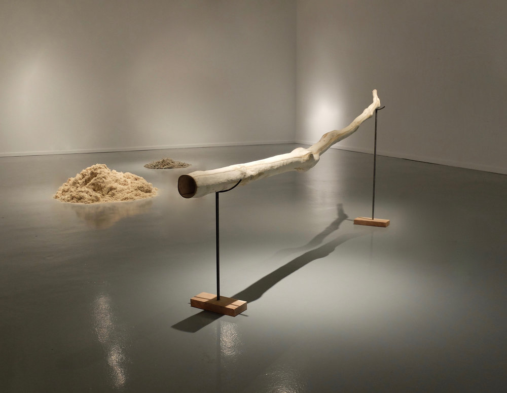 Laura Garcia-Penn,  Instrument , Pecan branch with core shavings and sagebrush, 13 x 5 feet