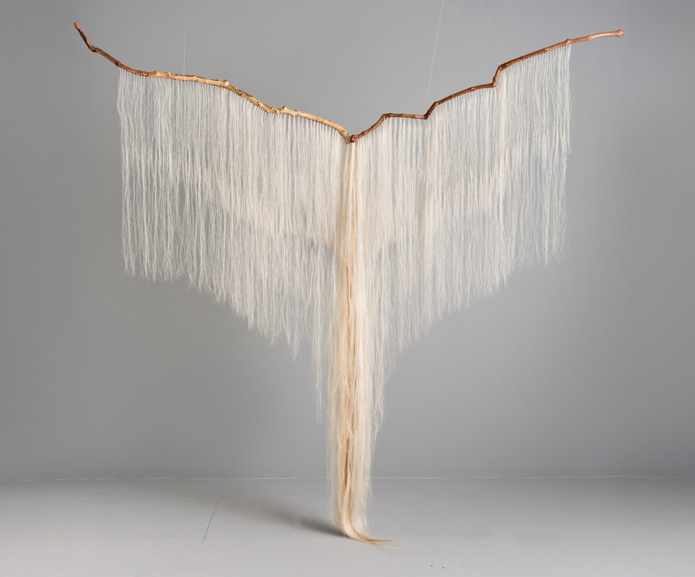 Continuum;  grapevine, sycamore, horse hair; 100 x 103 x 12 inches
