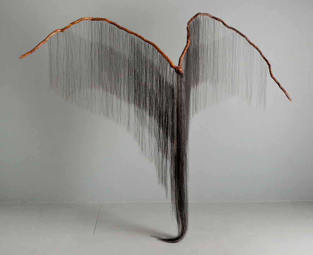 Predator;  grapevine, horse hair; 90 x 118 x 40 inches