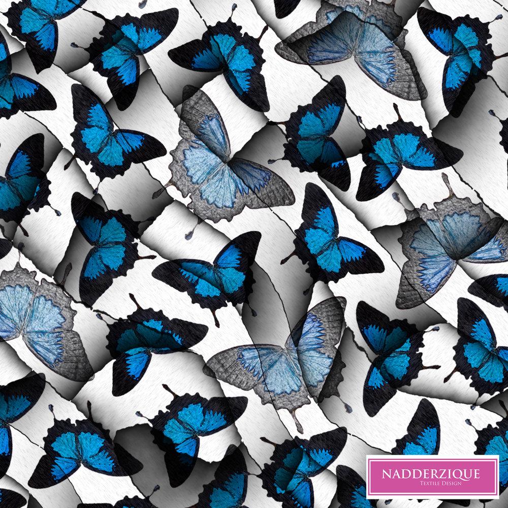 butterfly001.jpg