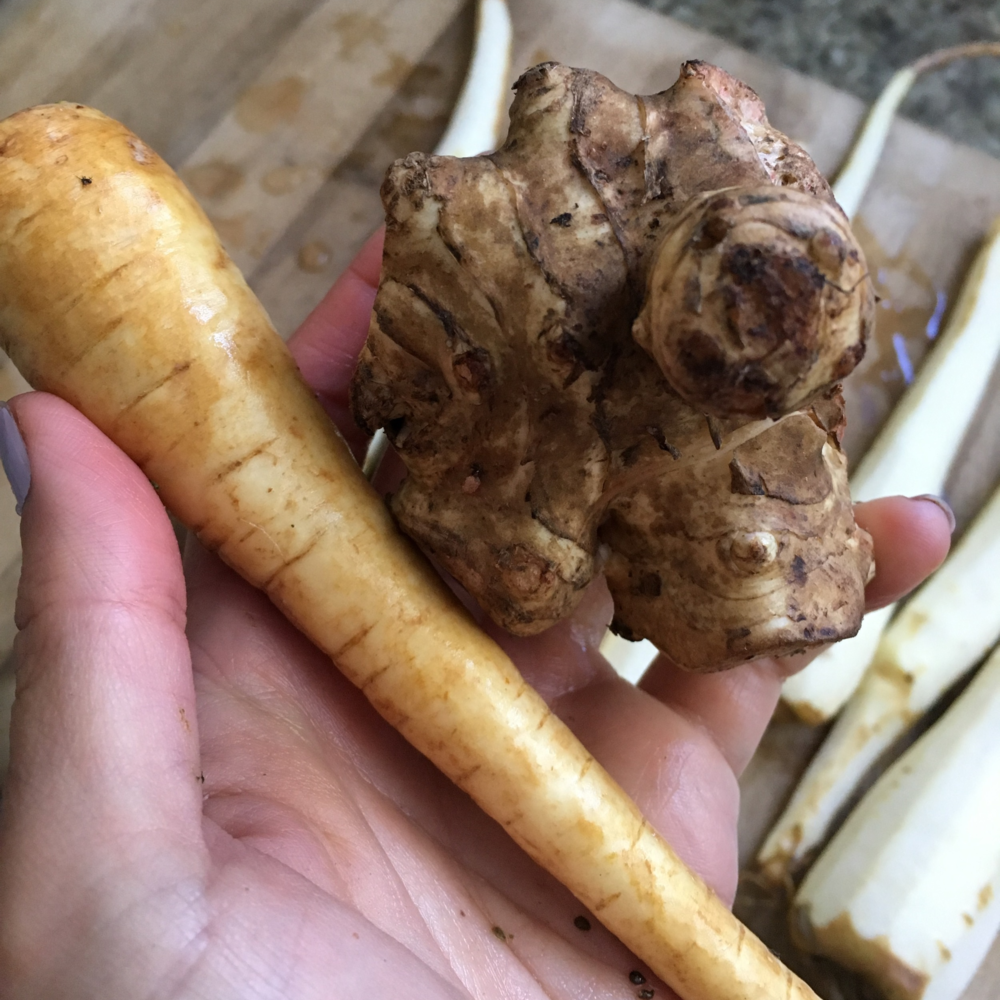 Can you guess which one is the sunchoke and which one is the parsnip?