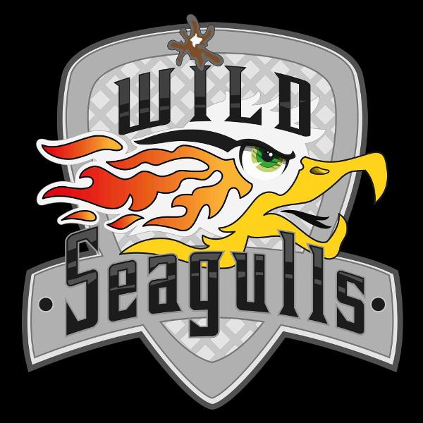Wild Seagulls - Stad : Lille (France)Terrein:4 boulevard de Mons, 59650 Villeneuve d'Ascq. FranceStadion:Decathlon Villeneuve d'AscqEmail:lillelacrosse@gmail.com