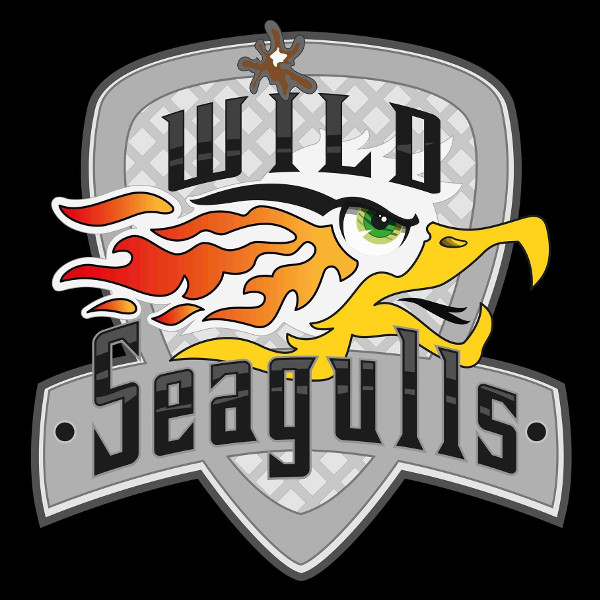 Wild Seagulls - Ville: Lille (France)Terrain:4 boulevard de Mons, 59650 Villeneuve d'Ascq. FranceStade:Decathlon Villeneuve d'AscqEmail:lillelacrosse@gmail.com
