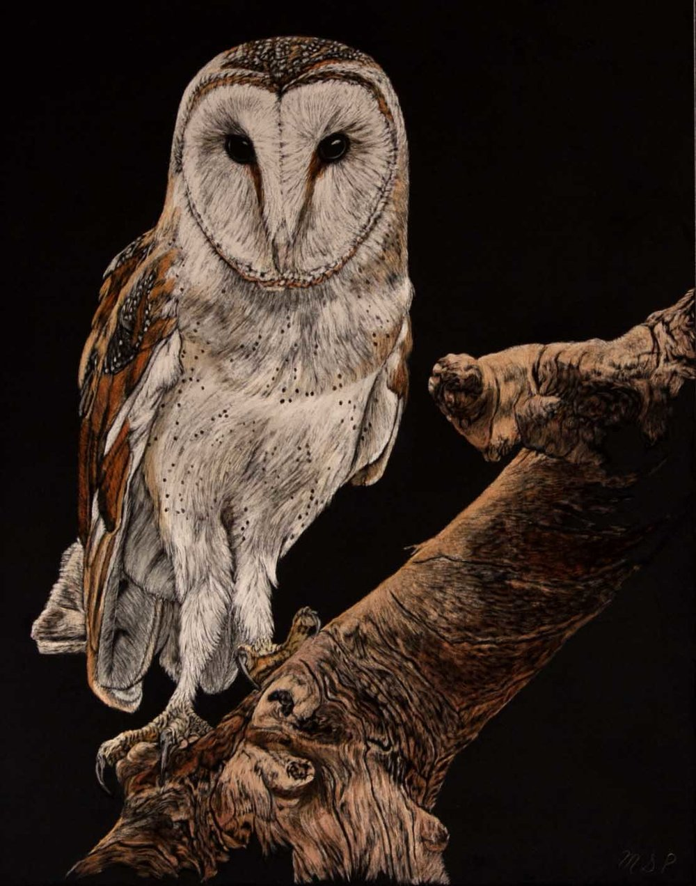 Birds Eye View iii website (1).jpg