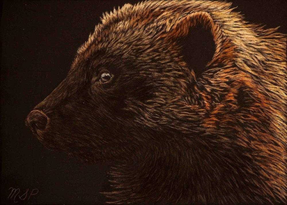 Wolverine website.jpg