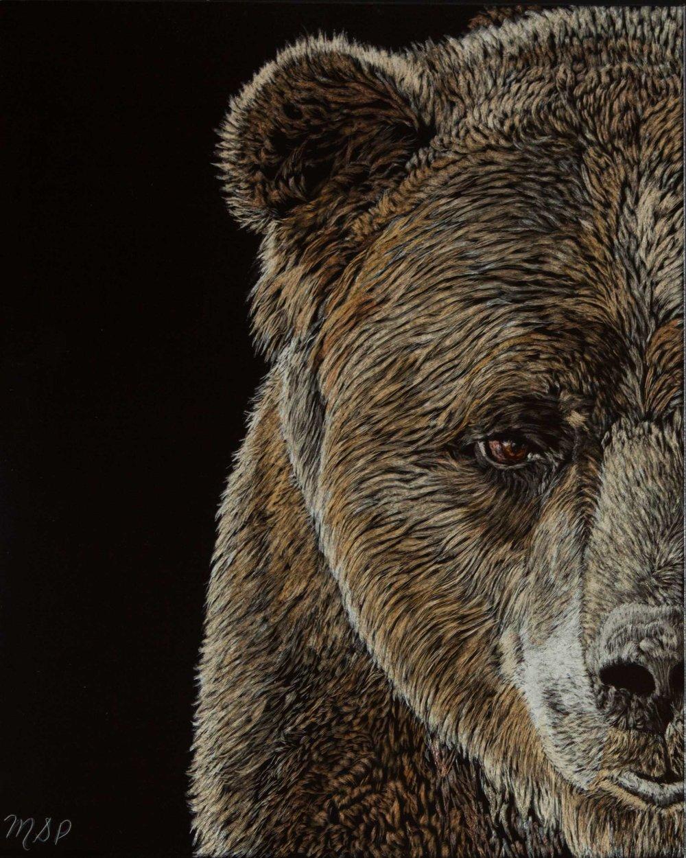 Grizzly Eye Website.jpg