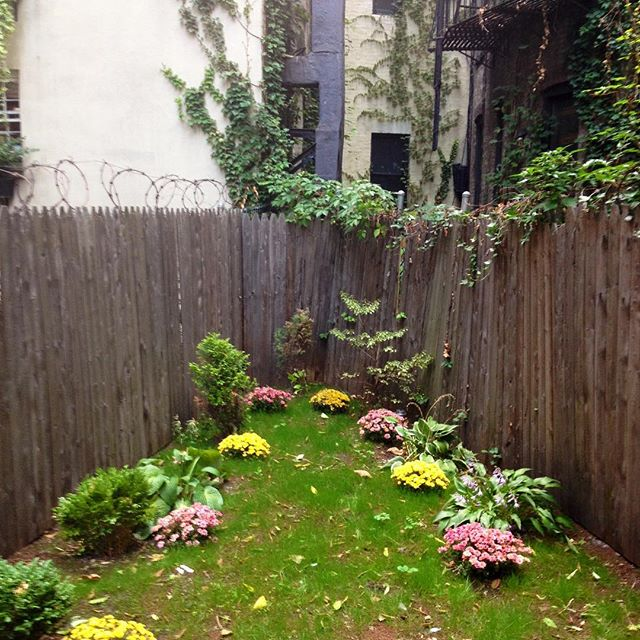Your exclusive private ivy-accented garden on the corner of Barrow and Commerce Streets.  Coming soon!  #westvillage #barrowstreet #commercestreet #privategarden #duplex #washerdryer #glassenclosedsolarium #exposedbrick #thruthewallairconditioners #nofeesofanykindwhatsoever #greenwichvillage #chelsea #soho #eastvillage #bedfordstreet