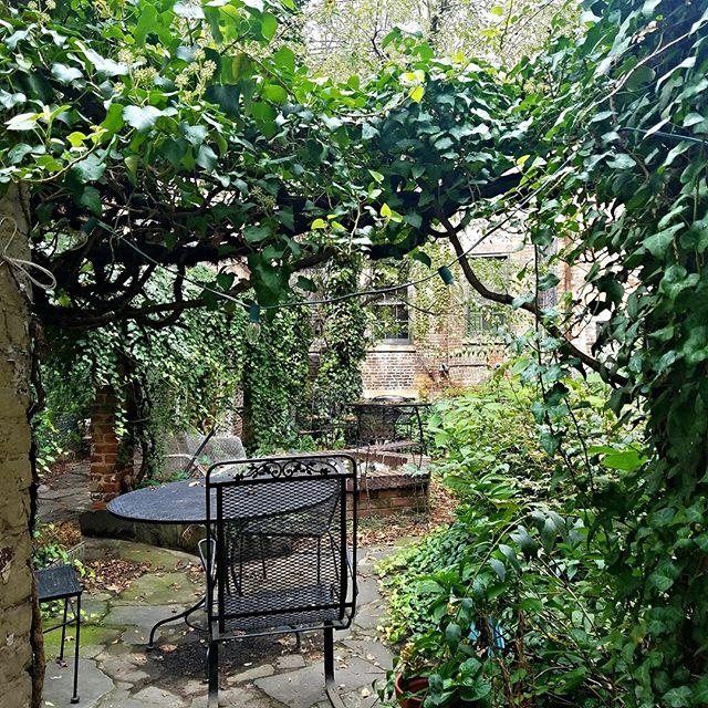 Thinking about warm summer days in the gorgeous English backyard garden at the corner of Bleecker & 11th.  #westvillage #westvillagenyc #westvillageeats #westvillagelife #greenwichvillage #magnoliabakery #bleeckerstreet #bleeckerstreetbeat #another_part_of_newyork #bleeckerstreetpark