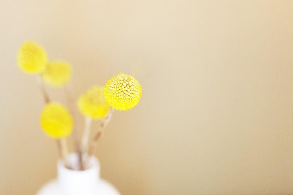 Yellow Flowers Feng Shui