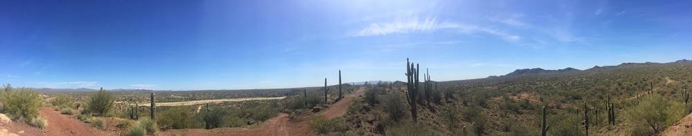 This was just past the Hassayampa River bed overlooking the many paths that are available. It's such a great feeling being free to choose and wander. Oh yea, I was actually balancing on top of the Suzuki to get this shot!