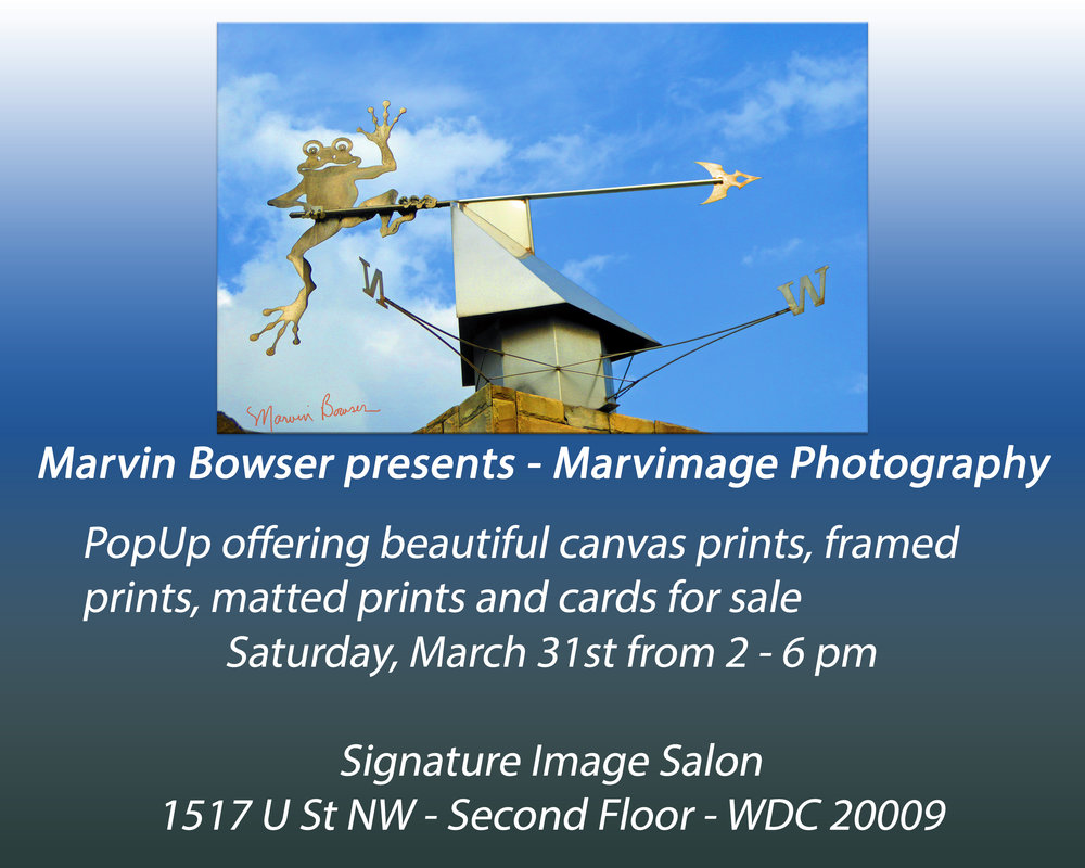 Marvin Bowser Presents Marvimage_edited-4.jpg