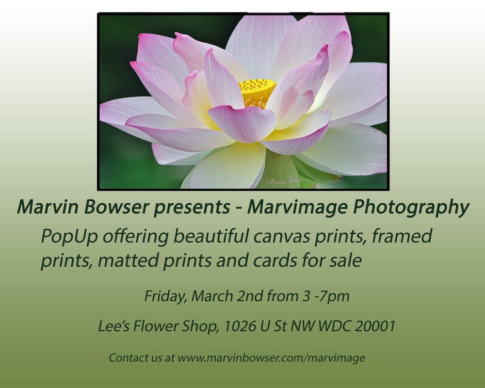 Marvin Bowser Presents Marvimage_edited-2.jpg