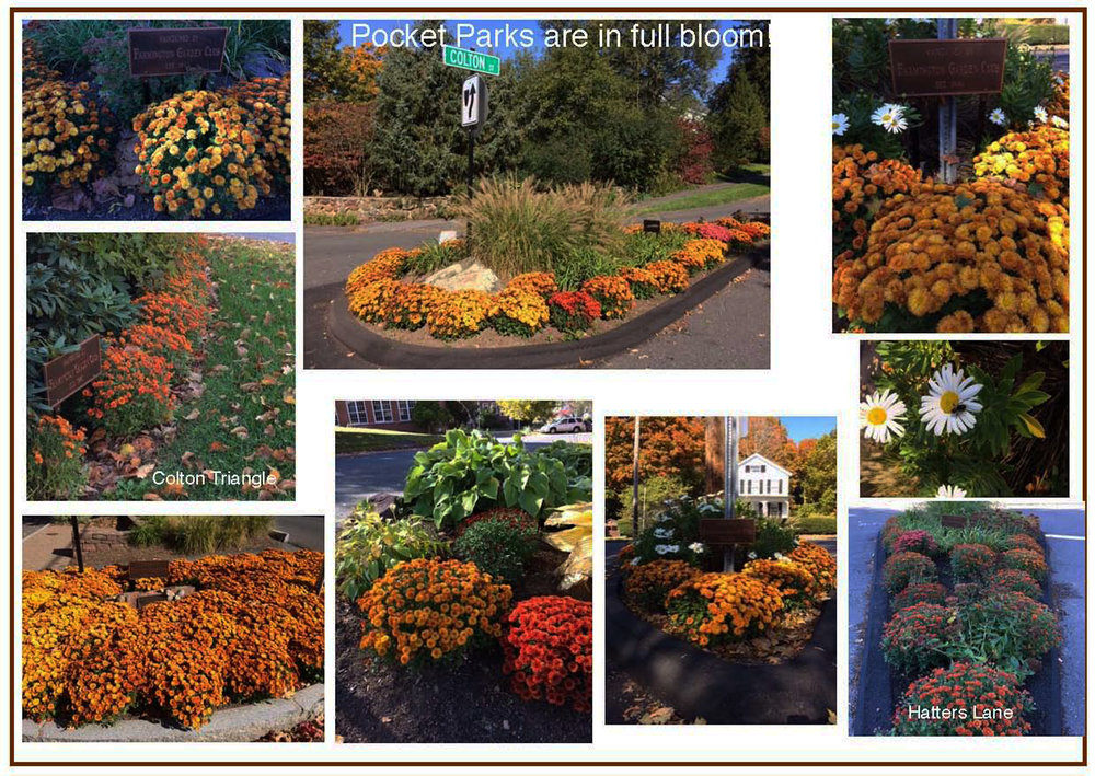 Pocket Parks fall picture spread.jpg