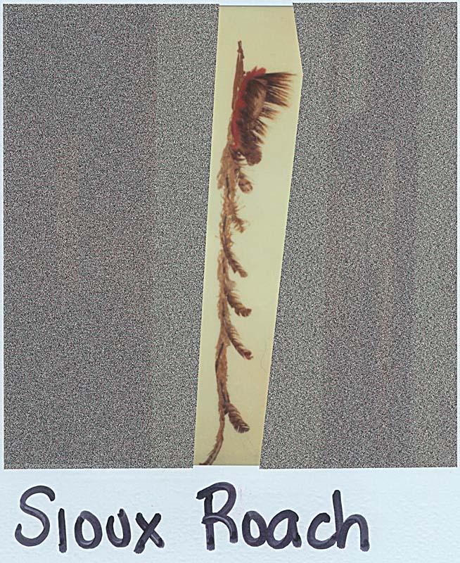 Sawtell_Sioux_Roach_f.JPG