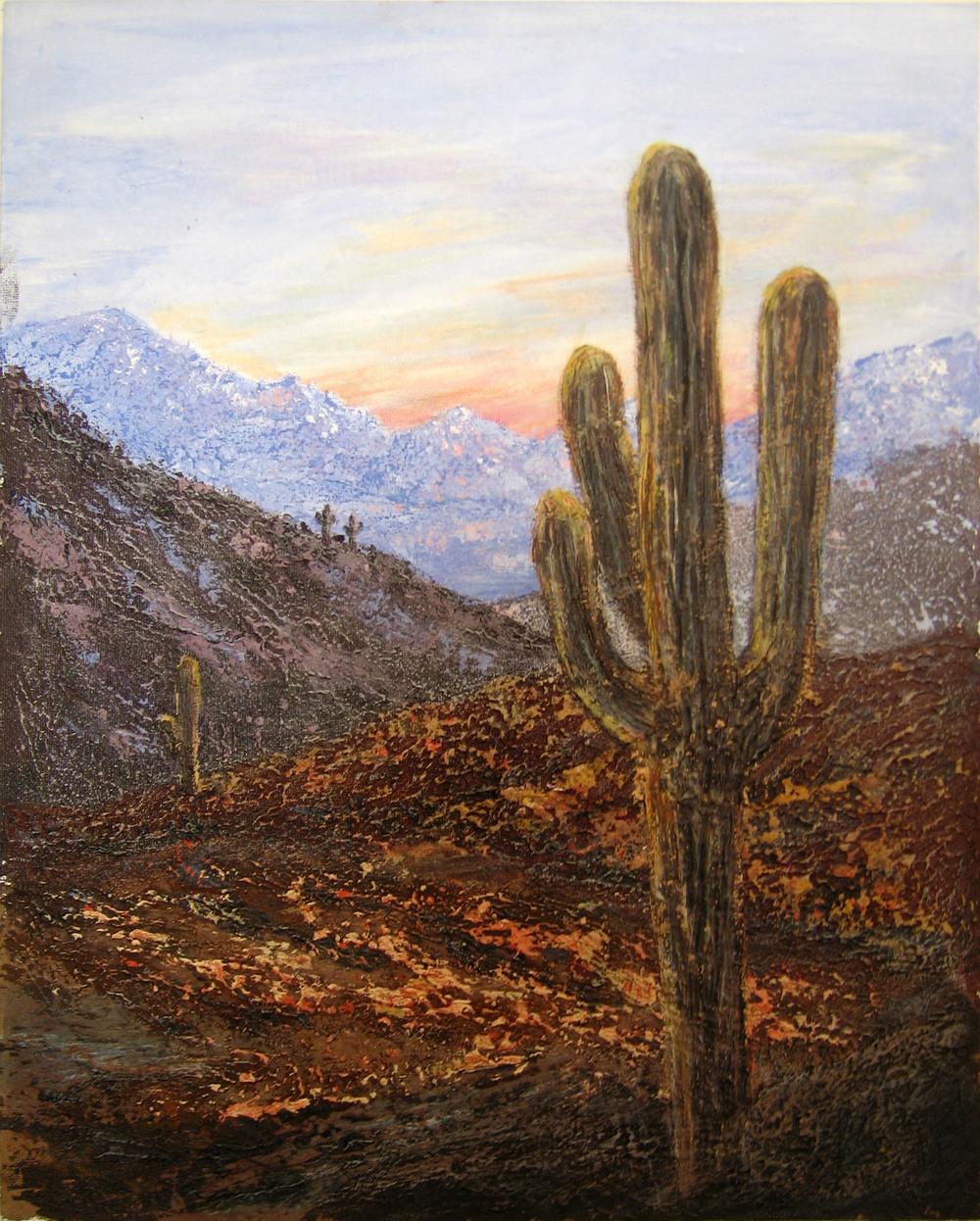 Evening light in Arizona