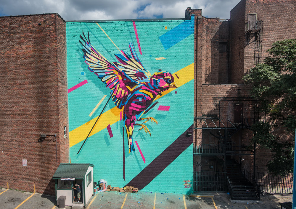 Bird #6 by Arlin (Brazil) for POW! WOW! Worcester 2016. Photo by Steve King. All Rights Reserved.
