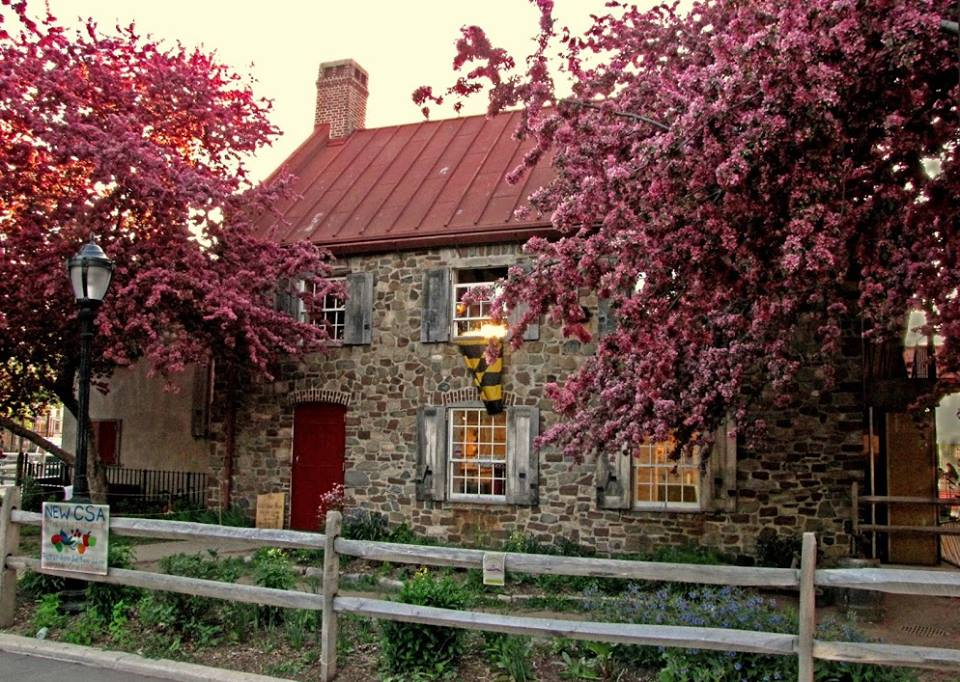 Old Stone House (Brooklyn)