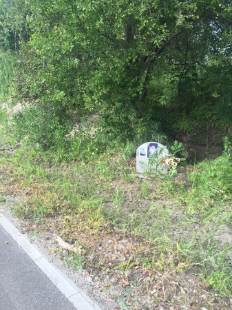 There are hundreds of these tombstones along the highways. Were they in a crash, or were they hit by a car? Who knows?