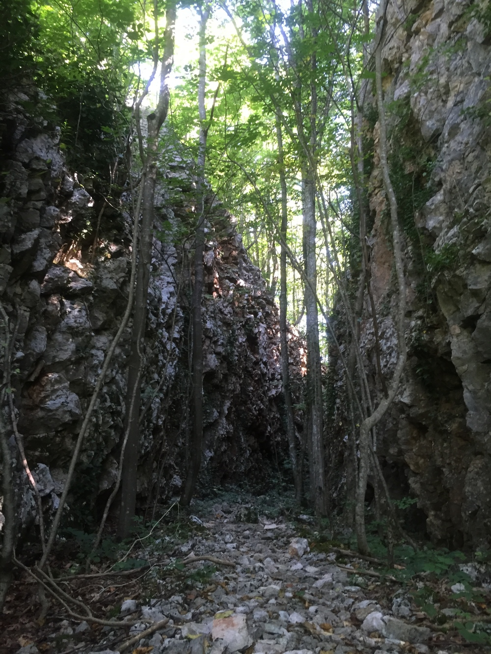 Rock walls along the trail.