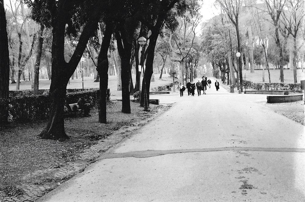 Park in Rome.jpg