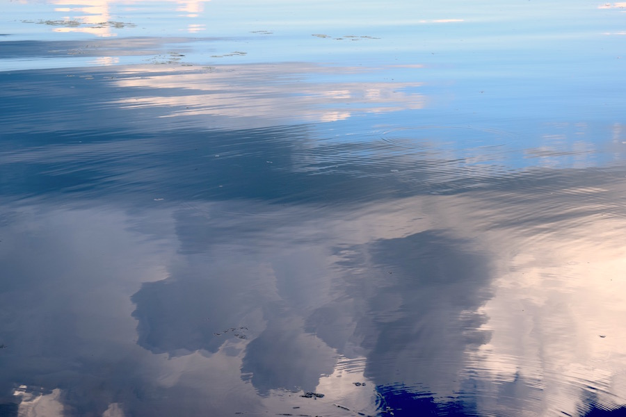 The above photograph is new work from my current project, Limnology.