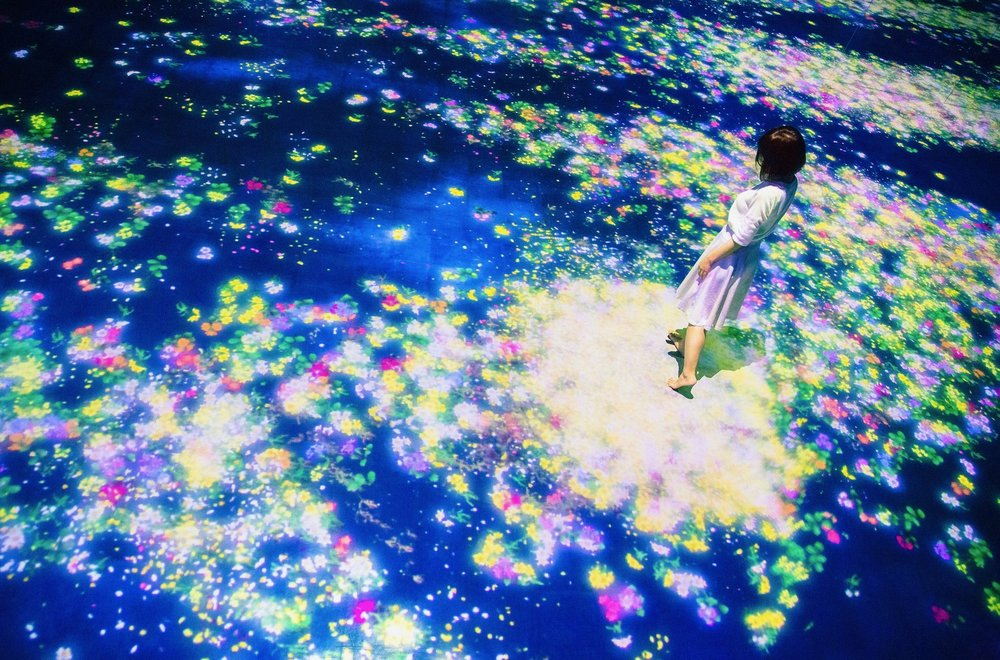 Flowers and People, Cannot be Controlled but Live Together,  2014, teamLab