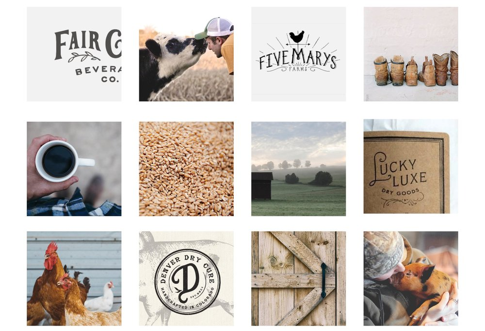 fischer-family-farm-mood-board