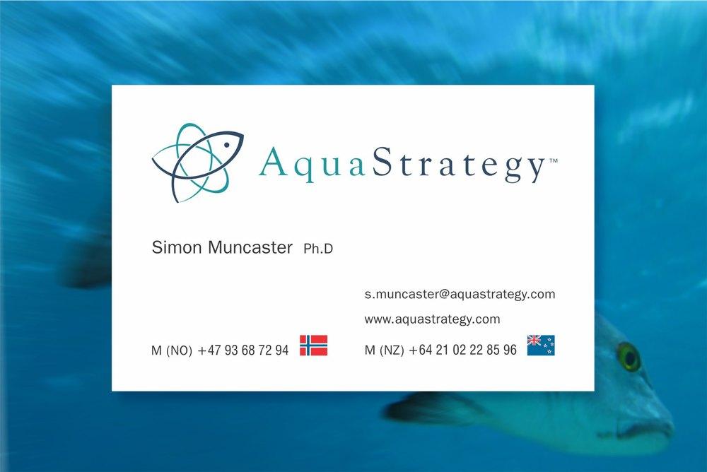 aqua_strategy_bc.jpg