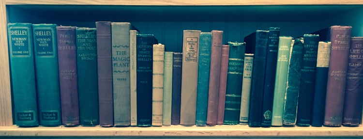 About 1/3 of my father's Shelley shelves.