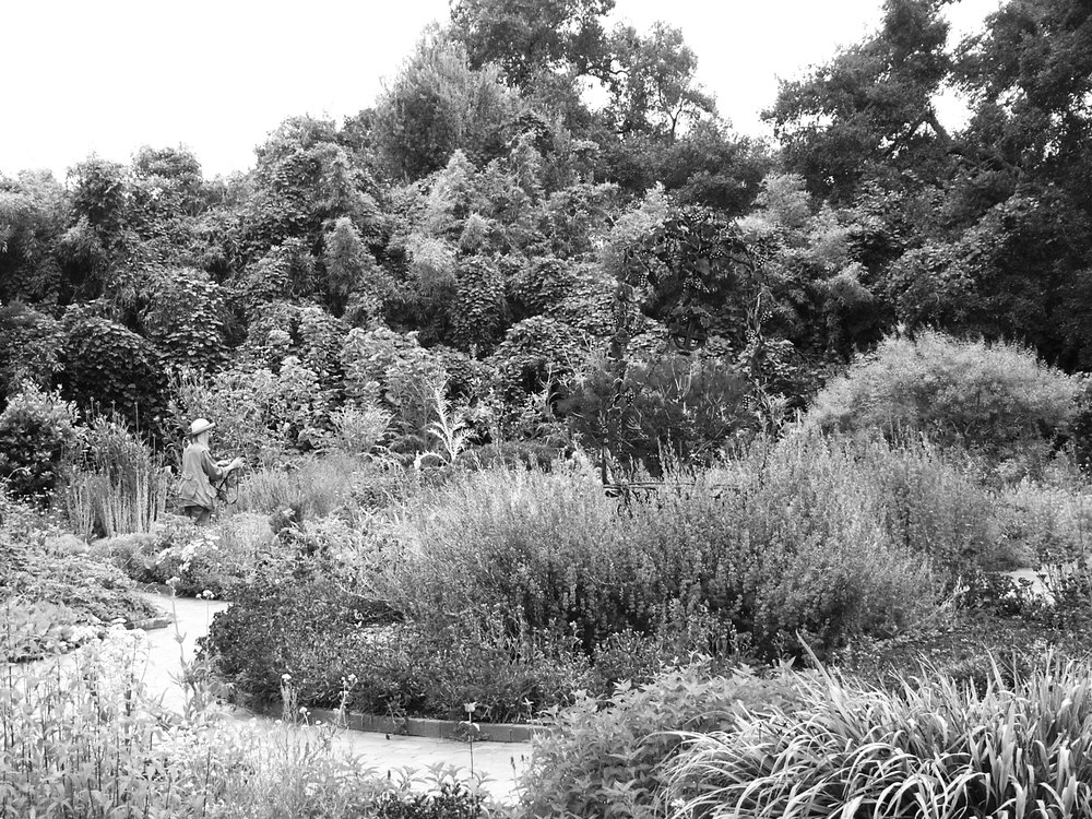 Herb_Garden_Spring_Blooms_Huntington.jpg