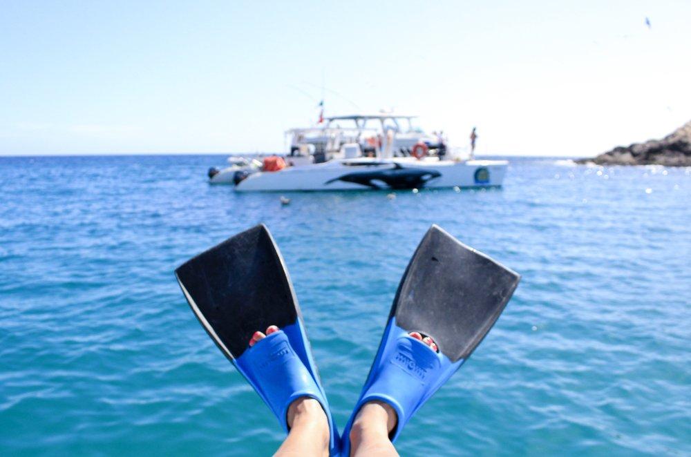 snorkel fins in cabo san lucas, mexico