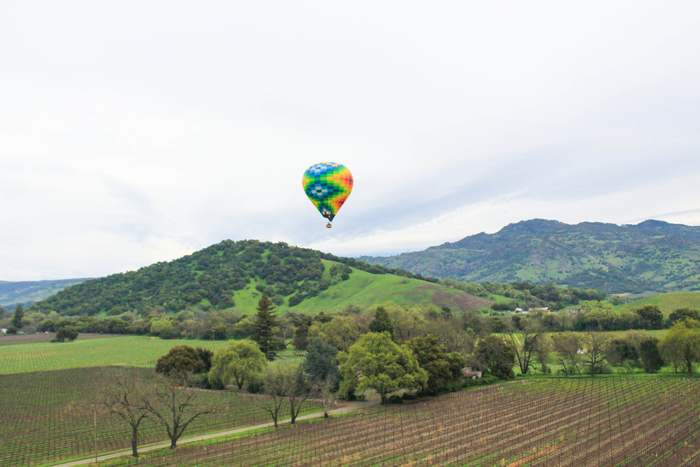 SUGAR & STAMPS - Hot Air Balloon RIDE OVER NAPA VALLEY
