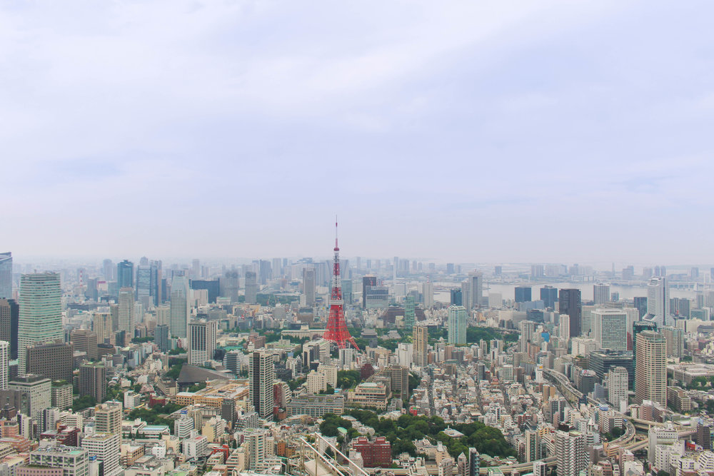 A 24 Hour Guide to Tokyo, Japan