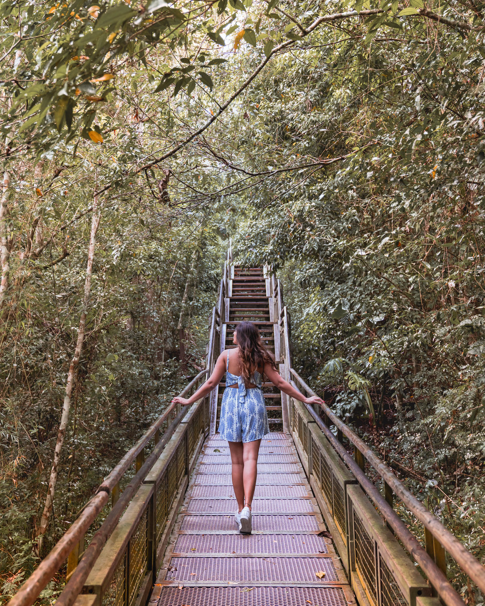 The Ultimate Iguazu Falls Guide: Argentina and Brazil