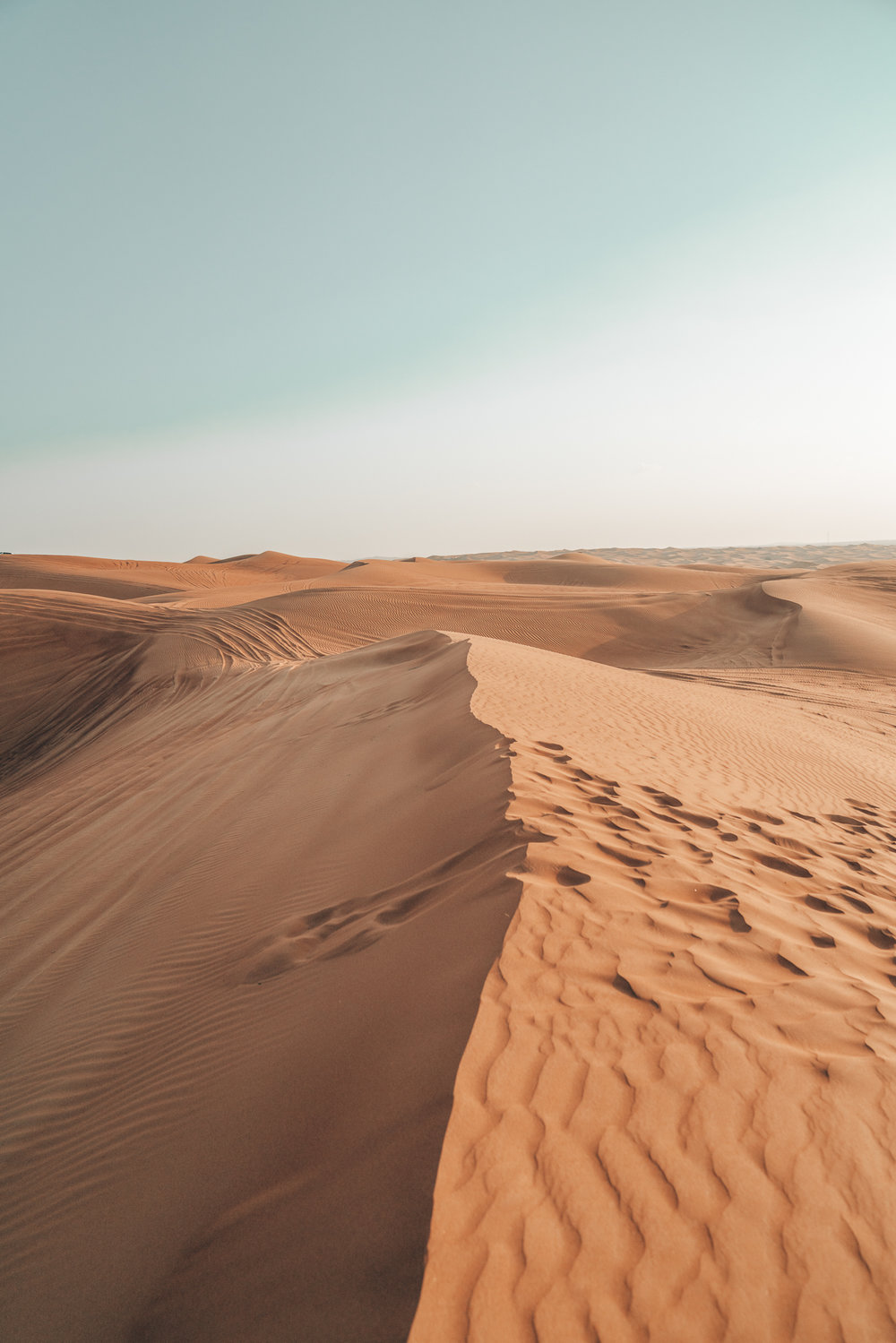 Why A Desert Safari Tour Should Be On Your Dubai Bucket List