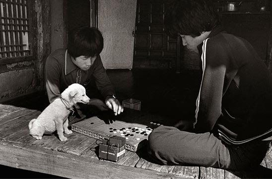 A Kim Ki-chan photo from the 1960s was often full of humor, people, and dogs. Development-era days weren't all so bad.