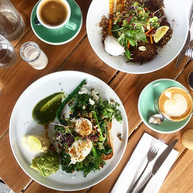 When @plain_sailing_elwood is just as epic as @cherryanlording's other ventures 😍 We can never go past a plate of greens- especially when the gluten free bread is about 3 slices thick & there's avo involved-  and so many other gluten & dairy free & vegan options here for all you (ie us) fussy eaters!
