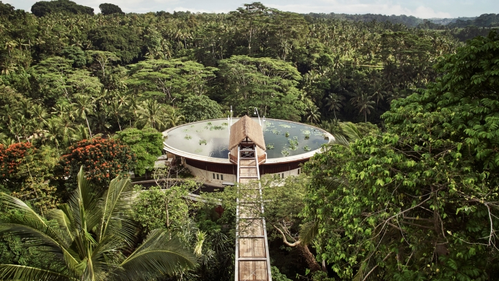 The Four Seasons Sayan sits below the circular lily pond. Guests reach the hotel by crossing the treetop-height walkway.