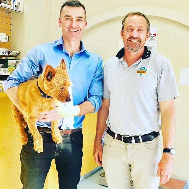 we are so happy to announce that @johncareyperth will be our MC this sunday at #dogtober !!! just 5 sleeps to go 🐶🐶🐶 @beaufortstreetnetwork #BSAM #markets #handmade #local #shoplocal #mtlawley #beaufortstreet #whatson #thisweekend #sunday #perthisok #dogs #puppies #pets