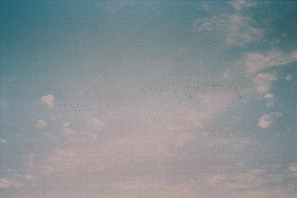 AA011.jpg