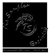 1382722504_logo-thempalerbushwick.png