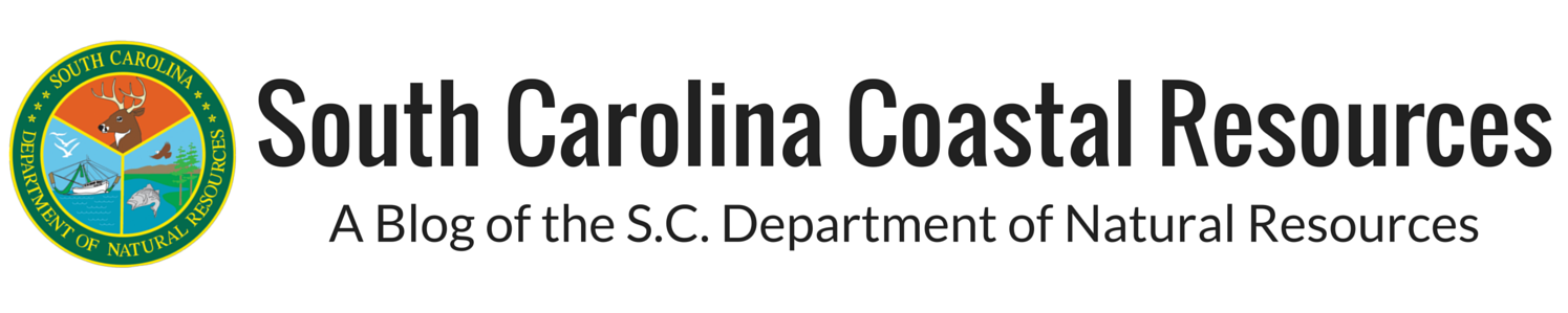 South Carolina Coastal Resources