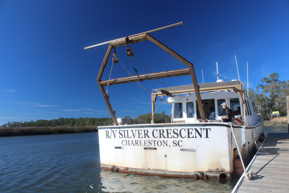 The Silver Crescent's captains take SCDNR biologists out to study shrimp, crabs, sharks, red drum, and many more inhabitants of South Carolina waters.  (Photo: E. Weeks/SCDNR)