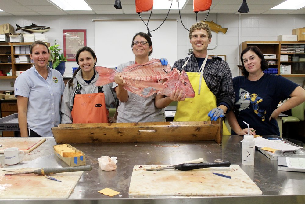 Our crackerjack snapper-processing team: (from L-R) Kayla Rudnay, Michelle Willis, Amy Dukes, Adam Lytton, and Tracey Smart. (Photo: E. Weeks/SCDNR)