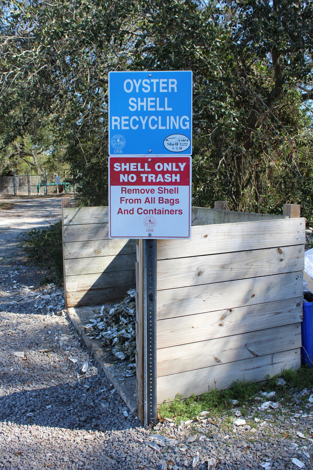 Oyster shell drop-off sites across the coast offer a convenient place to recycle your shells, so that SCDNR biologists can quarantine them before returning them to the environment to rebuild oyster reefs. (Photo: E. Weeks/SCDNR)