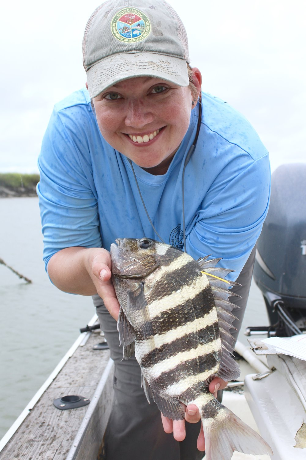 SCDNR's Morgan Hart shows off a sheepshead she caught and tagged near Capers Island. (Photo: E. Weeks/SCDNR)